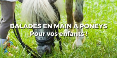 Balades en main a poneys pour vos enfants